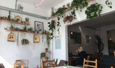 Image of https://bristol-barkers.co.uk/dog-friendly/albatross-cafe/