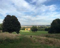 Image for Ashton Court Estate