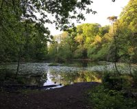 Image for Abbots Pool