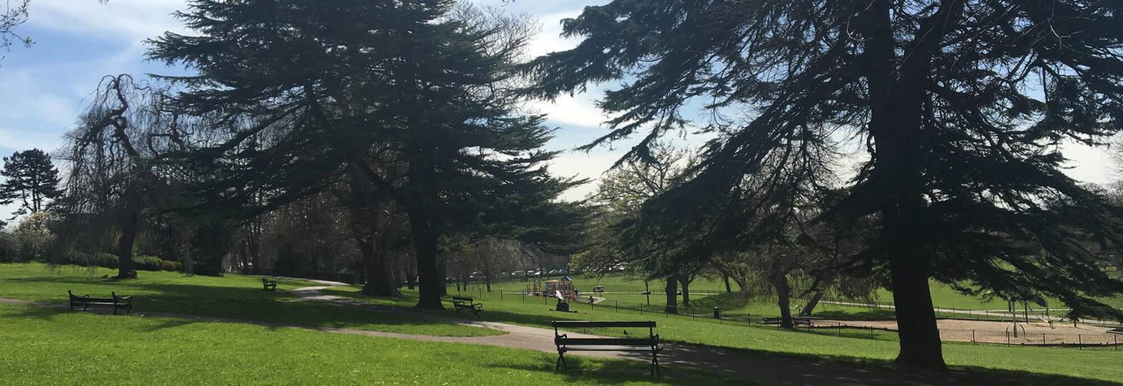 Image of Greville Smyth Park