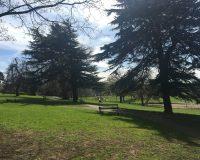 Image for Greville Smyth Park