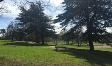 Image of https://bristol-barkers.co.uk/walks/greville-symth-park/