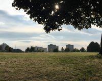 Image for Netham Park