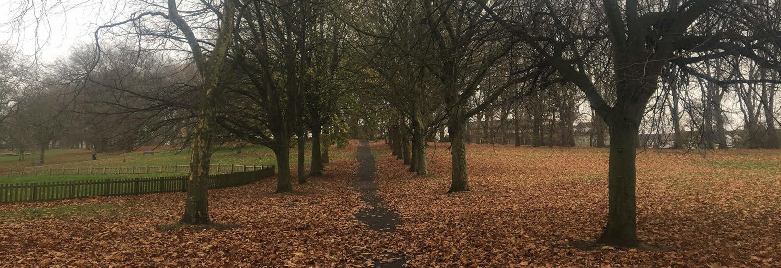 Image of St George Park