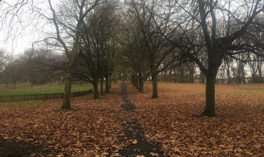 Image of https://bristol-barkers.co.uk/walks/st-george-park/