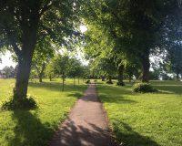Image for Victoria Park