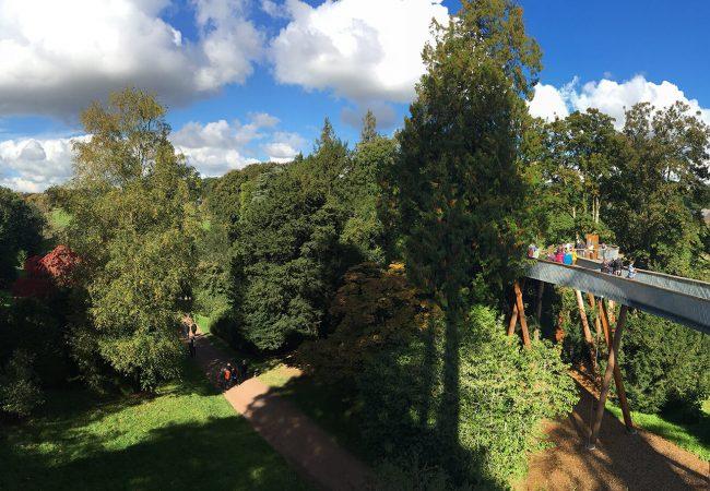 Image of Westonbirt Arboretum