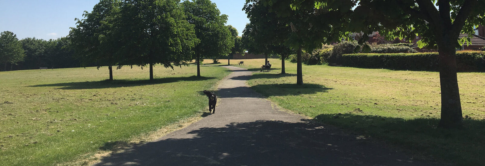 Image of Monks Park