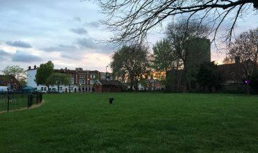 Image of https://bristol-barkers.co.uk/walks/avonmouth-park/