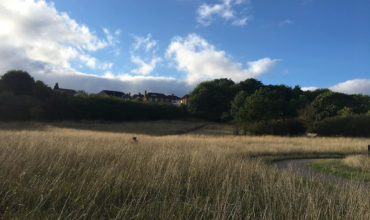 Image of https://bristol-barkers.co.uk/walks/callington-road-nature-reserve/