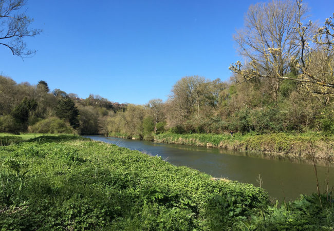 Image of Eastwood Farm Nature Reserve