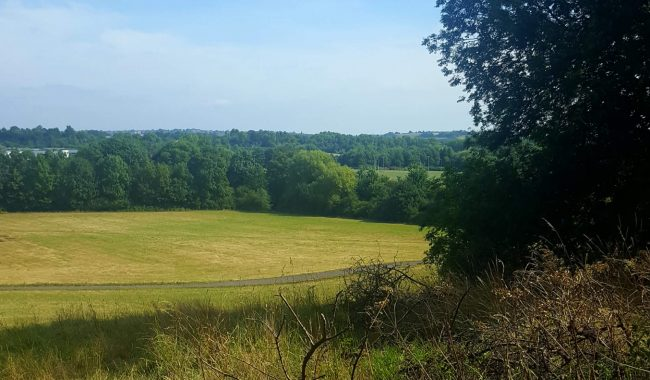Image of Stockwood Open Space Nature Reserve