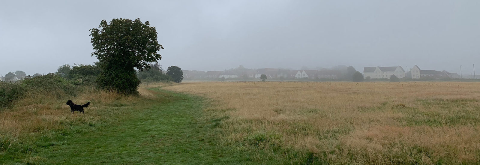 Image of Yate Common