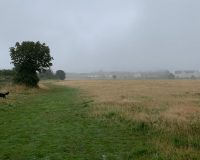 Image for Yate Common