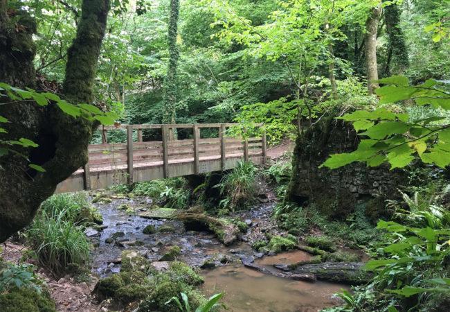Image of Harridge Wood Nature Reserve