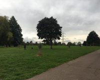 Image for St Anne's Park