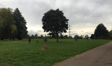 Image of https://bristol-barkers.co.uk/walks/st-annes-park-2/