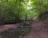 Image for St Anne's Wood