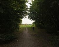 Image for Warmley Forest Park