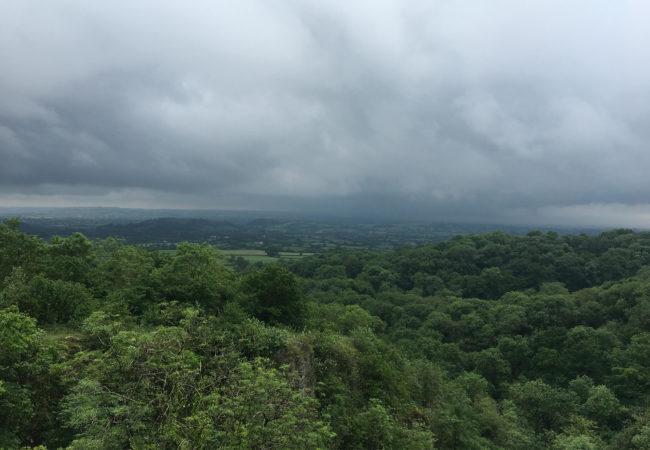 Image of Ebbor Gorge Nature Reserve