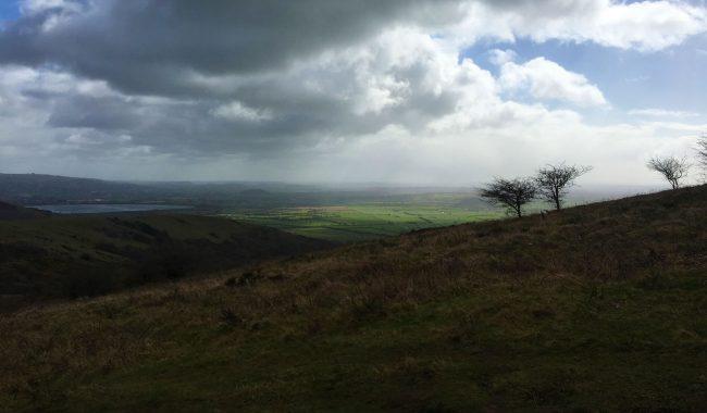 Image of King's Wood & Cross Plain