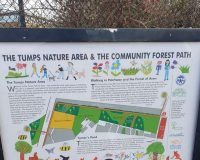 Image for The Tumps Nature Area
