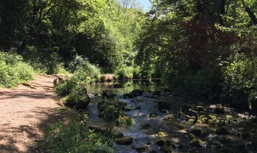 Image of https://bristol-barkers.co.uk/walks/vallis-vale/