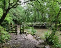 Image for Huckford Quarry Nature Reserve