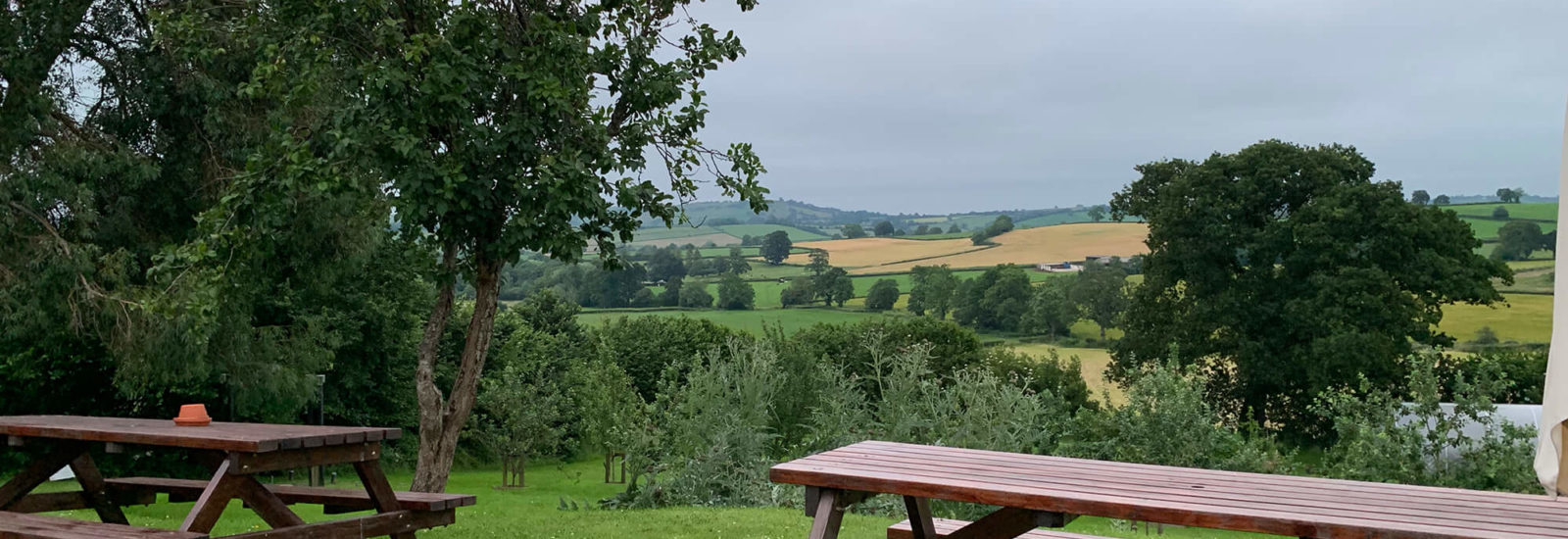 Image of The Pony & Trap Chew Magna