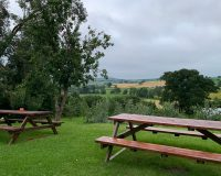 Image for The Pony & Trap Chew Magna