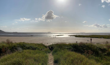 Image of https://bristol-barkers.co.uk/walks/sand-bay-beach/