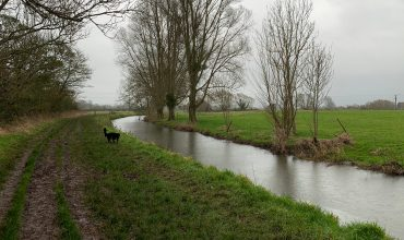 Image of https://bristol-barkers.co.uk/walks/congresbury-to-wrington/