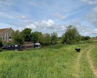Image for Swineford to Keynsham River Walk