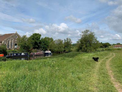 Image of Swineford to Keynsham River Walk