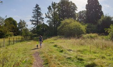 Image of https://bristol-barkers.co.uk/walks/barnwood-arboretum-barnwood-park/