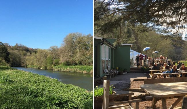 Image of Eastwood Farm Nature Reserve & Beese's Riverside Bar & Garden