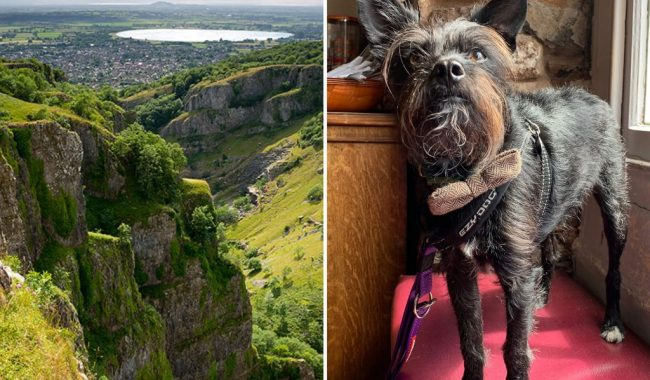 Image of Cheddar Gorge Circular & The White Hart