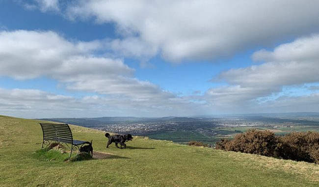 Image of Cleeve Common