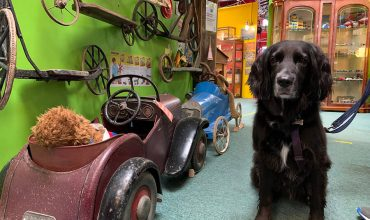 Image of https://bristol-barkers.co.uk/walks/cotswold-motoring-museum-toy-collection/