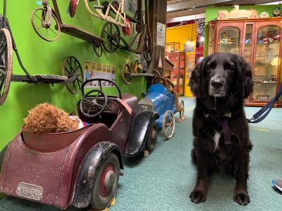 Image of Cotswold Motoring Museum & Toy Collection