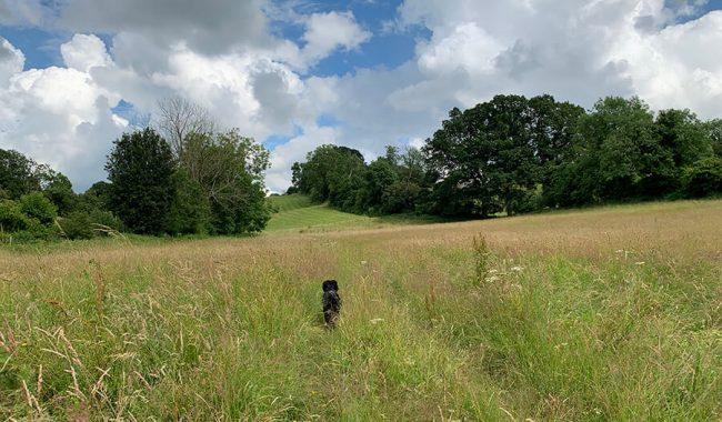 Image of Deerhurst River Severn Circular Walk